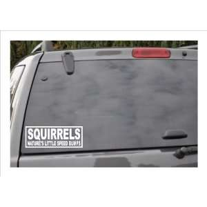 SQUIRRELSNATURES LITTLE SPEED BUMPS  window decal