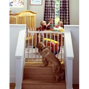 North States Stairway Swing Gate    Pet