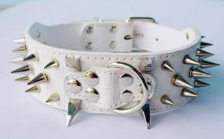 Guarantee Spiked Studded Leather Dog Collars PitBull Mastiff