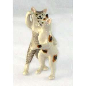 CATS Tiger Grey and Calico DANCE on Hind LEGS Dancing