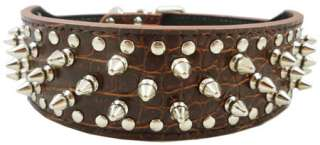 19 22 Studed Spikes Croc Leather Dog Collar Pit Bull