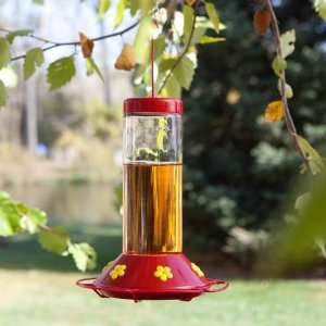 Perky Pet Hummingbird Glass Best Bird Feeder Patio, Lawn