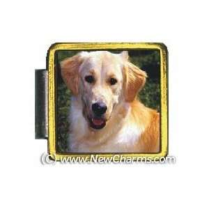 Golden Retriever Dog Gold Trim Italian Charm Save Bracelet Jewelry